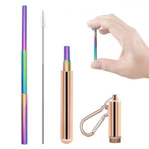 Telescopic Collapsible Metal Reusable Straw Rose Gold Case Rainbow Straw